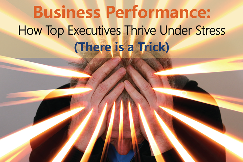 Business Performance 2